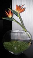 Ваза 22.5*11.5*H30 см Декоративный наполнитель, Искусственные цветы Стрелиции продаются отдельно.